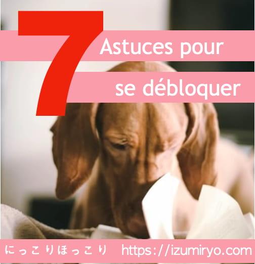 dog 7 book